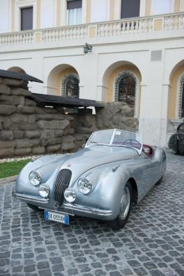 Jaguar DSC_4844