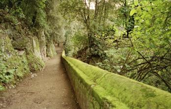 Tivoli , aprile 2005 - Villa Gregoriana - Sentieri e vegetazione